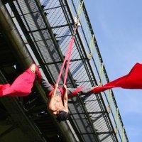 aerial_ws_linz