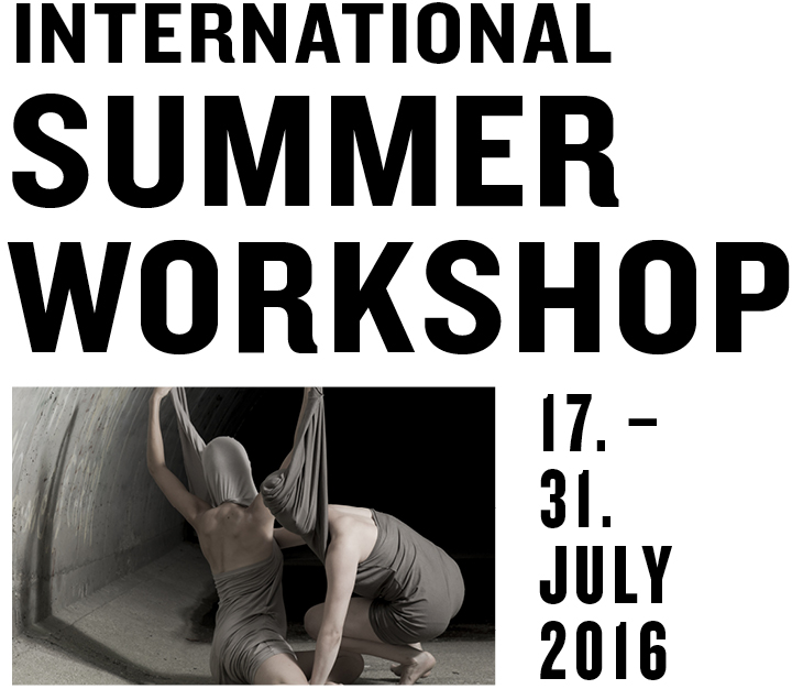 International Summer Workshop for classical and contemporary dance in Austria - for pre-professional and professional dancers